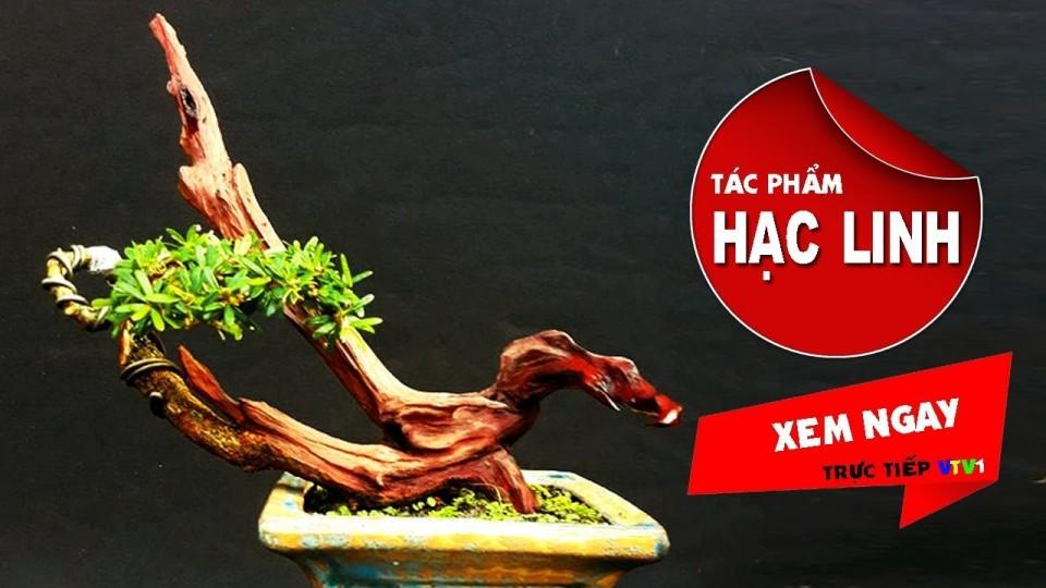 Bonsai Hạc Linh | Tác phẩm bonsai độc nhất triển lãm giỗ tổ Hung Vương | Ý NGHĨA CỦA BIỂU TƯỢNG CHIM HẠC TRONG DÂN GIAN